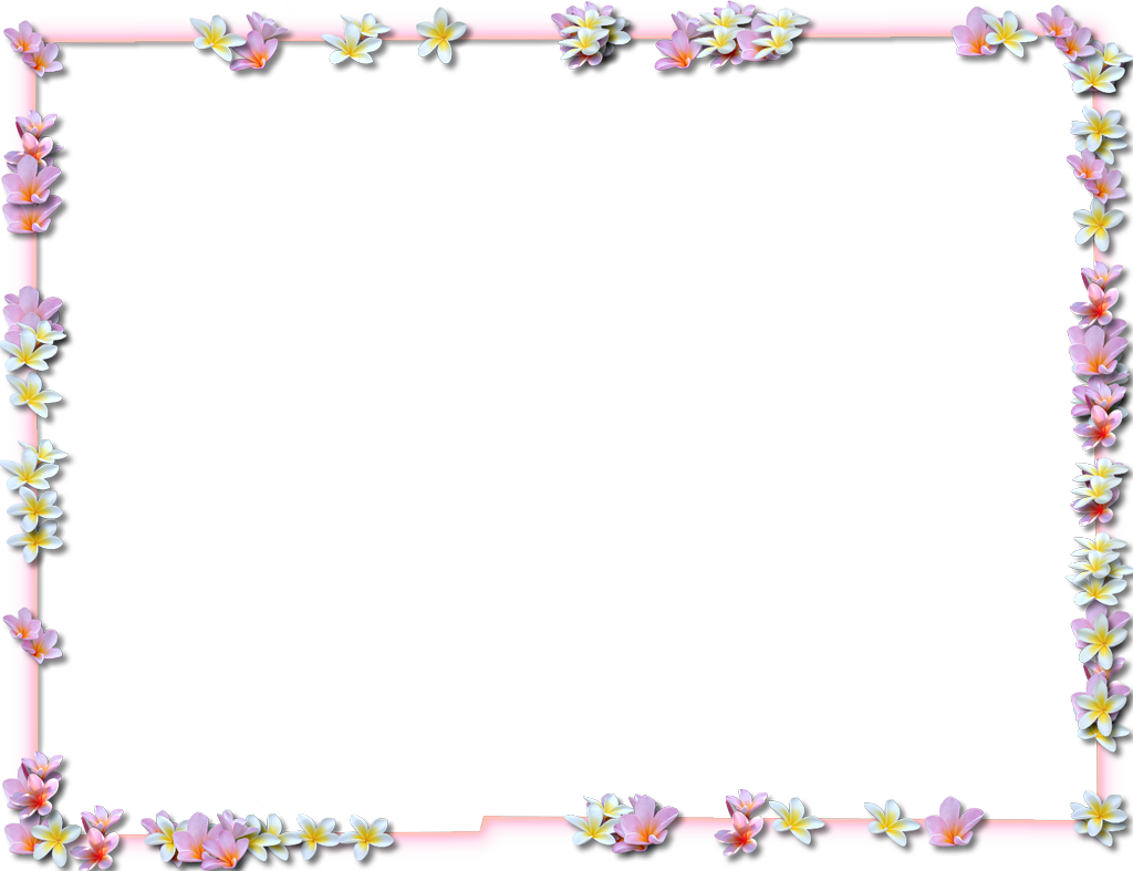 Colorful Frames And Borders Png | Search Results ...