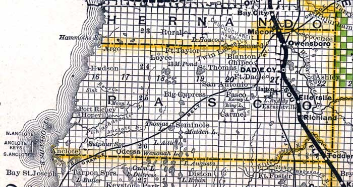 Map Of Pasco County Florida.Pasco County 1888