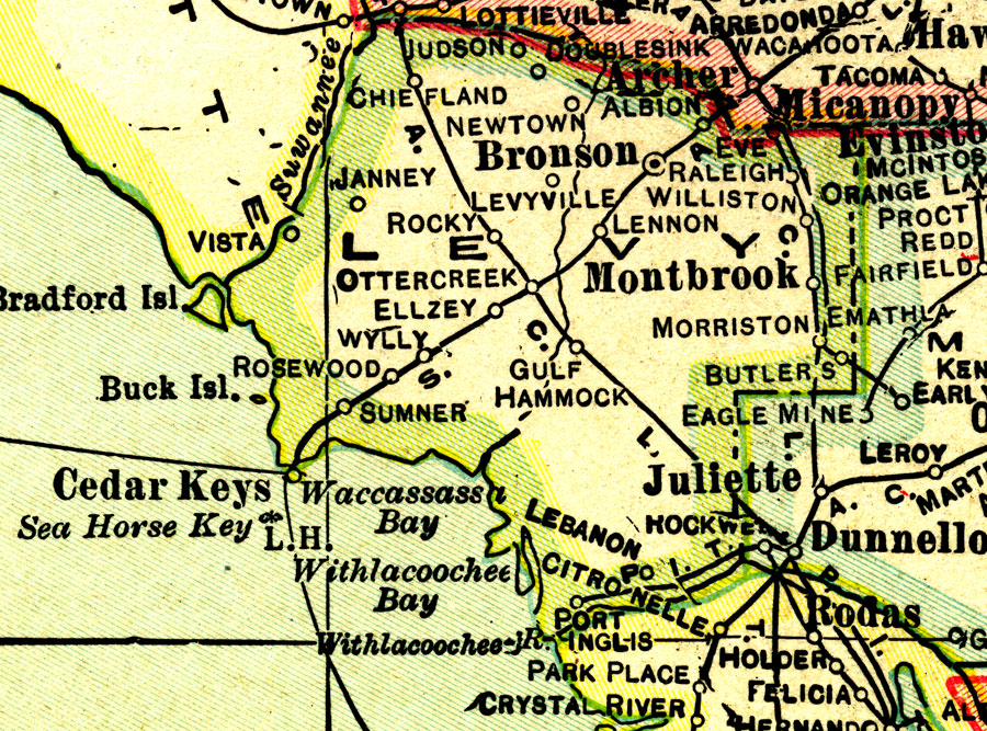Levy County 1916
