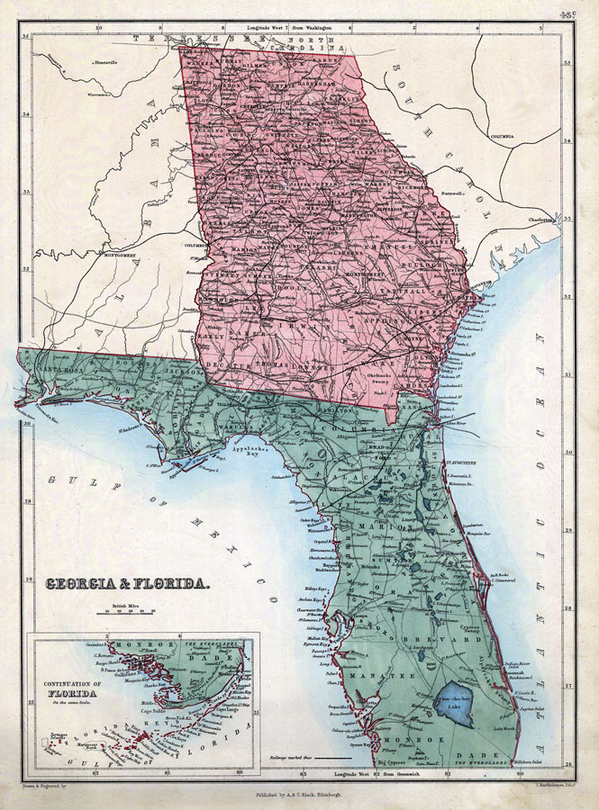 Florida And Georgia Map.Georgia Florida 1873