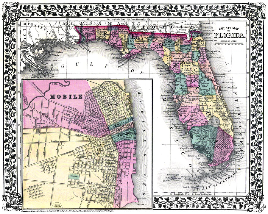 County Map of Florida, 1876