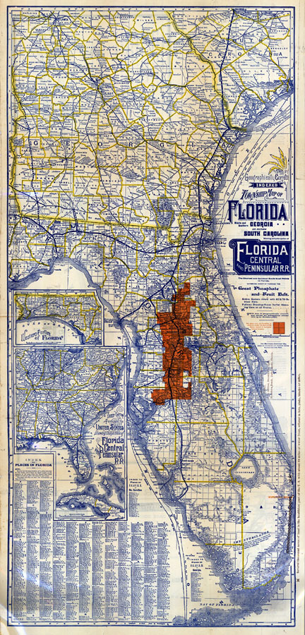 Geographically correct indexed township map of Florida and southern ...