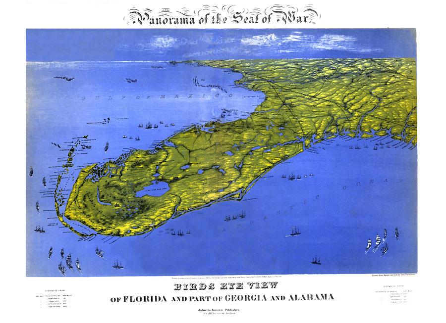 Georgia And Florida Map.Panorama Of The Seat Of War Of Florida And Part Of Georgia And