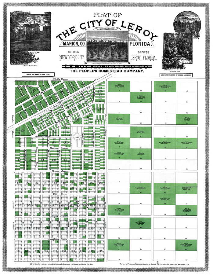 Florida Plat Maps.Plat Of The City Of Leroy Marion Co Florida 1890 Ad