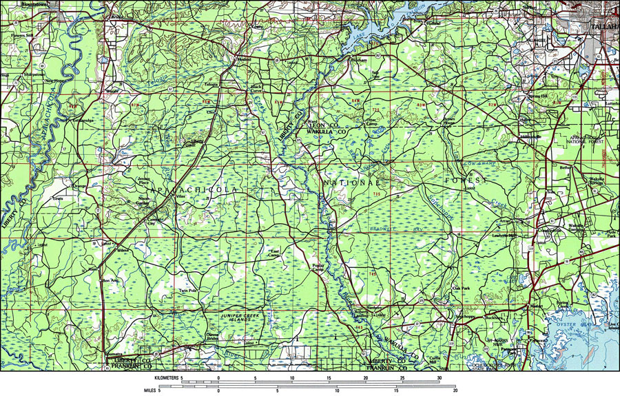 Apalachicola National Forest, 1988 on map of port saint joe florida, map of punta rassa florida, map of indian creek florida, map of greenville florida, map of big coppitt key florida, map of ochlockonee river florida, map of st. lucie county florida, full large map of florida, map of cedar key florida, map of chokoloskee florida, map of st. cloud florida, map of south carolina florida, map of st teresa florida, map of texas florida, map of florida panhandle, map of micco florida, map of hypoluxo florida, map of ponce de leon florida, map of alys beach florida, map of sopchoppy florida,