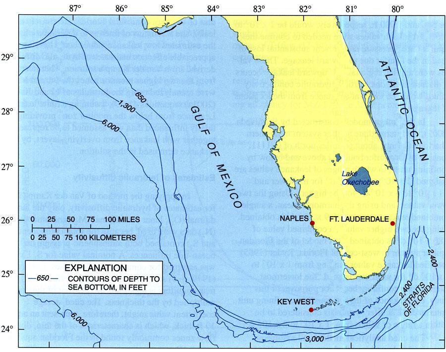 The Florida Platform, 2004 88