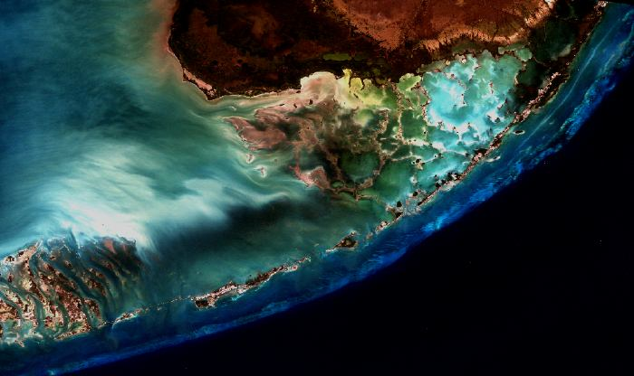 Florida Keys Coral Community October - Satellite maps florida