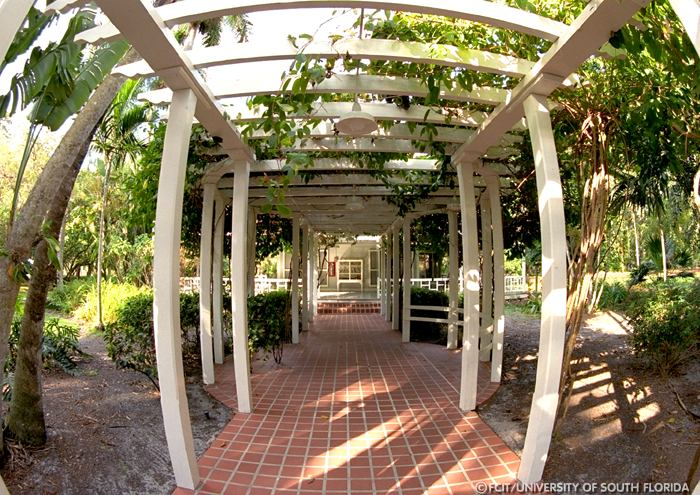 Covered Walkway Designs For Homes: Covered Walkway
