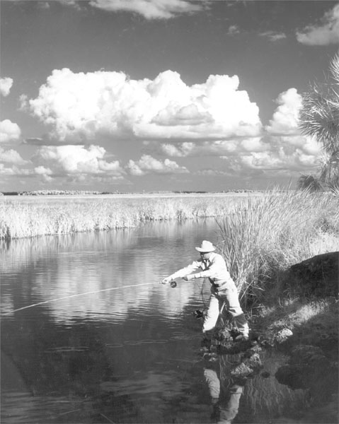 Fly fishing in lee county for Laura lee fishing report