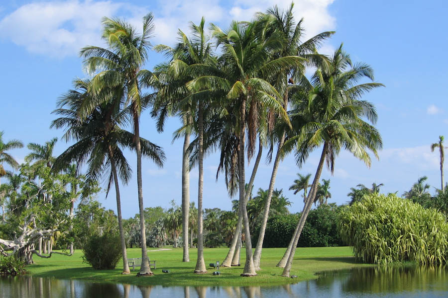 How Are Is Miami Fl To West Palm Beach Fl