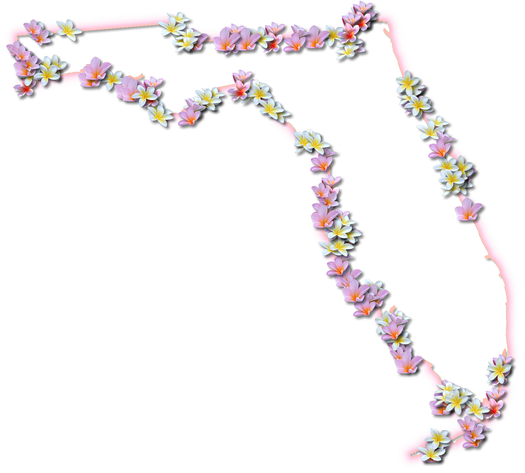 Florida Fancy Frame Style Maps In  Styles - Florida map to color