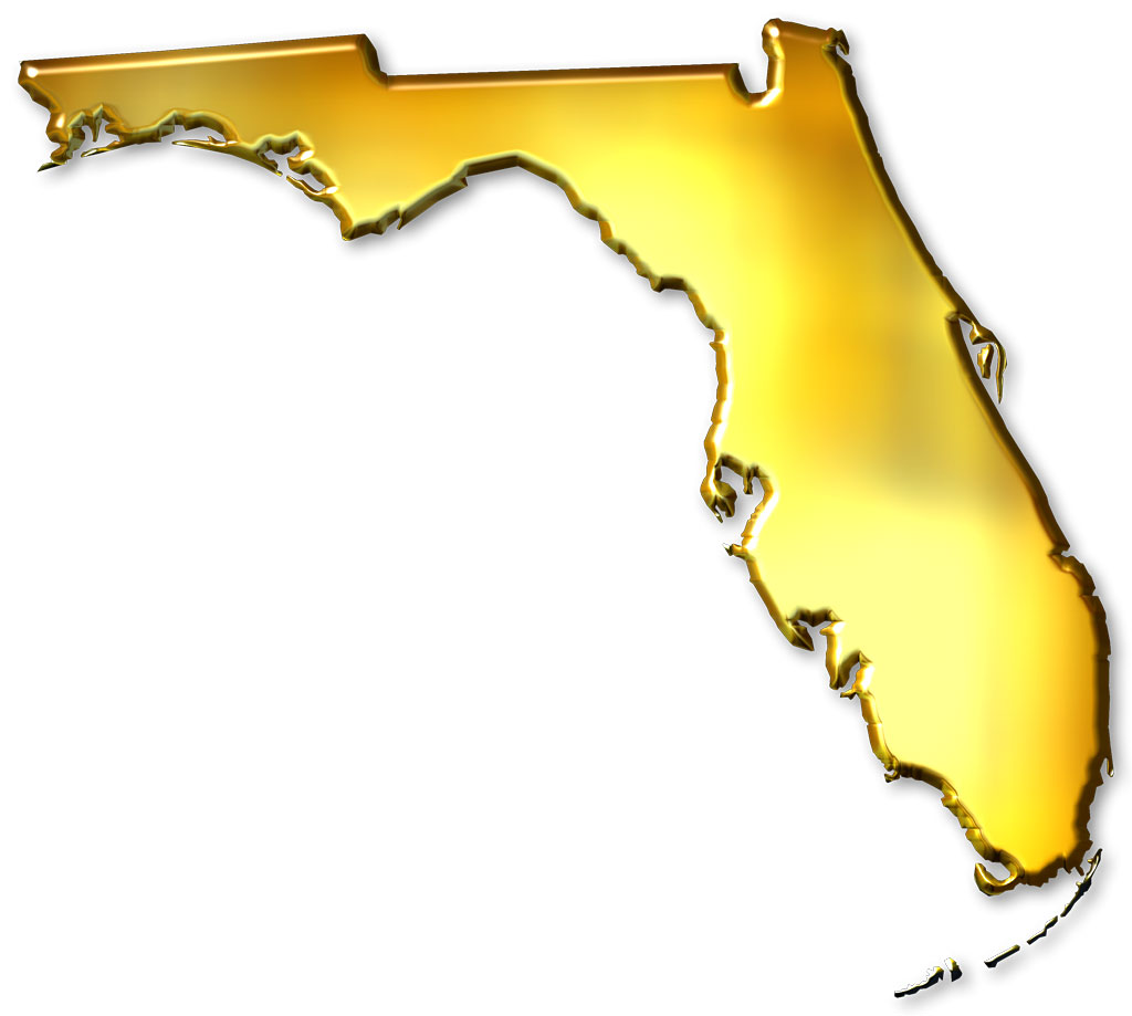 Florida Abstract Style Maps 11 Gold Metallic