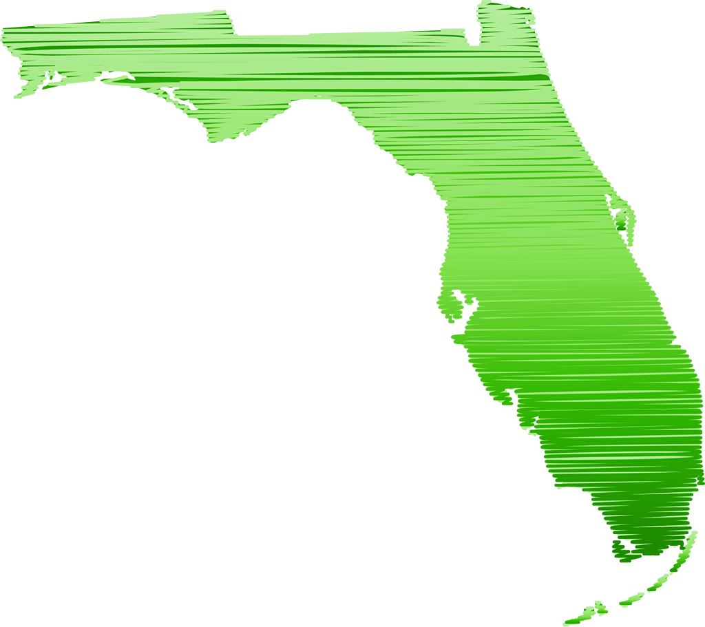 """Florida """"Abstract"""" Style Maps: #14 Green Sketch"""