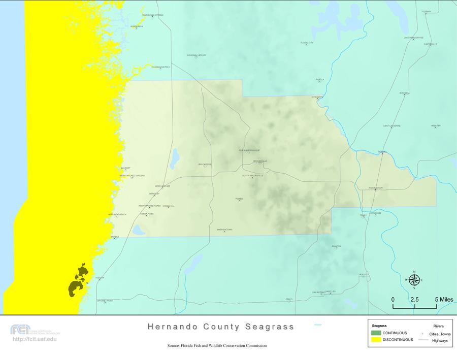 Hernando Florida Map.Florida Seagrass Hernando 2008