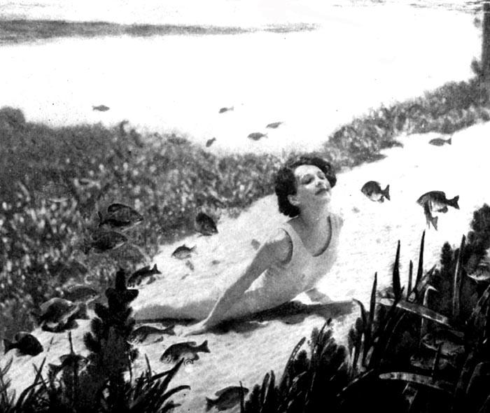 Silver Springs Silvers: Underwater Fairyland, Silver Springs, Florida