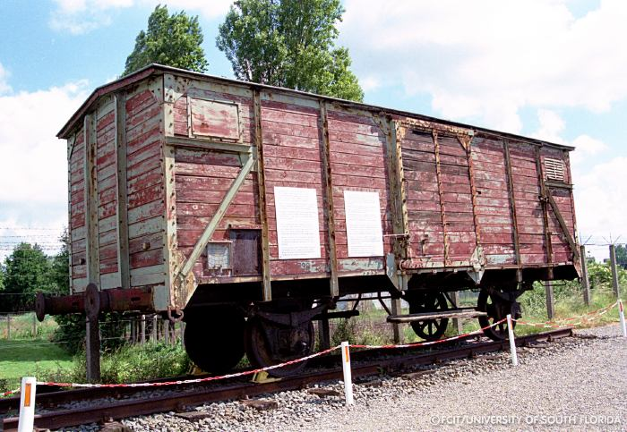 Image result for the holocaust, cattle wagons