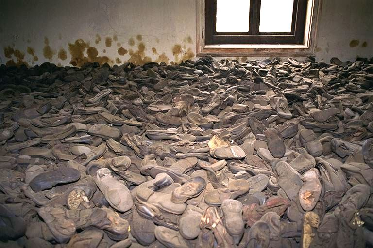 Anne Frank S Shoes