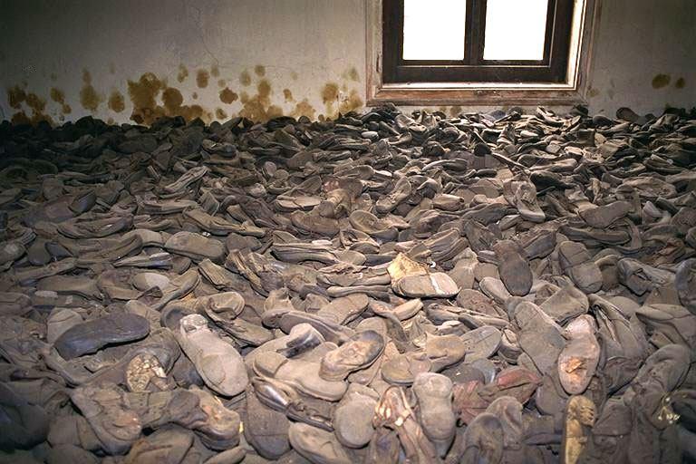 Shoe Uk Us