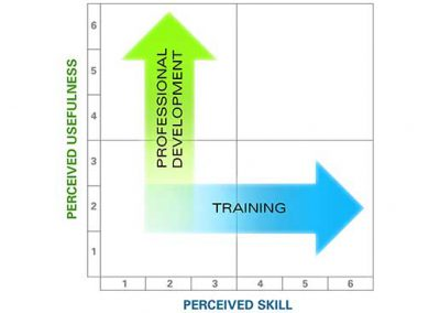 Perceived Skill and Usefulness