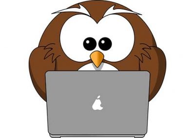 Cartoon Owl and Laptop
