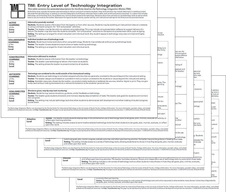 TIM Descriptors by Level