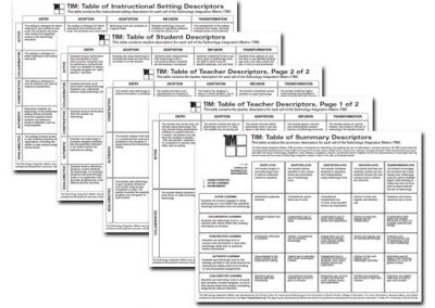 TIM Summary and Extended Descriptors