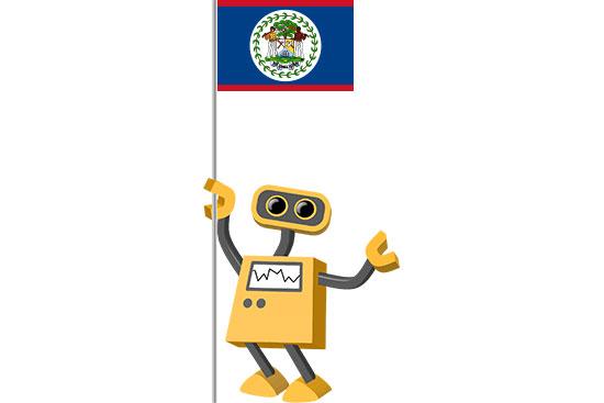 Robot 39-BZ: Flag Bot, Belize