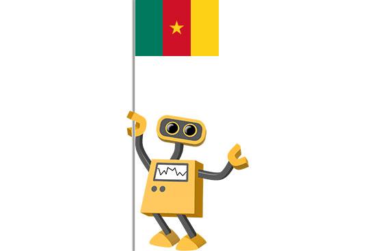 Robot 39-CM: Flag Bot, Cameroon