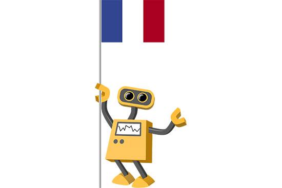 Robot 39-FR: Flag Bot, France