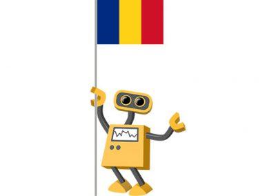 Robot 39-RO: Flag Bot, Romania