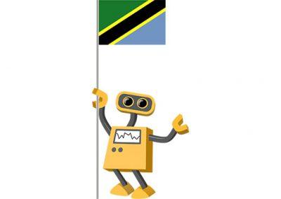 Robot 39-TZ: Flag Bot, Tanzania