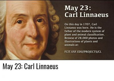 May 23: Carl Linnaeus