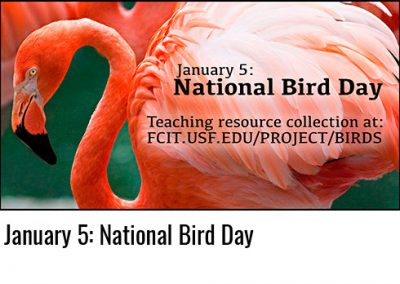 January 5: National Bird Day