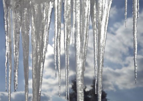 Photo of the Month: Icicles