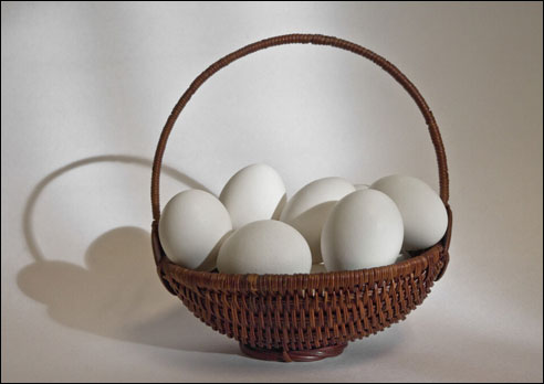 Photo of the Month: All Eggs in One Basket