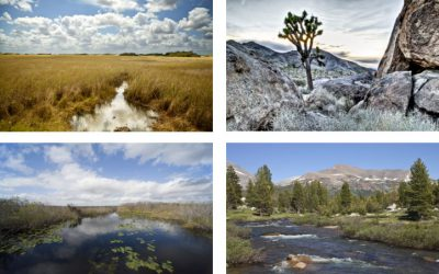 Photos of the Month: The Great Outdoors